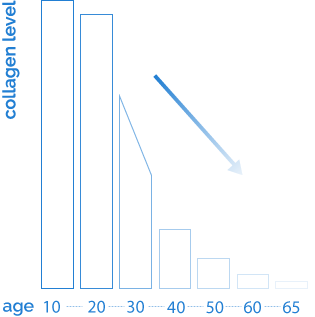 Collagen level graphic as we age